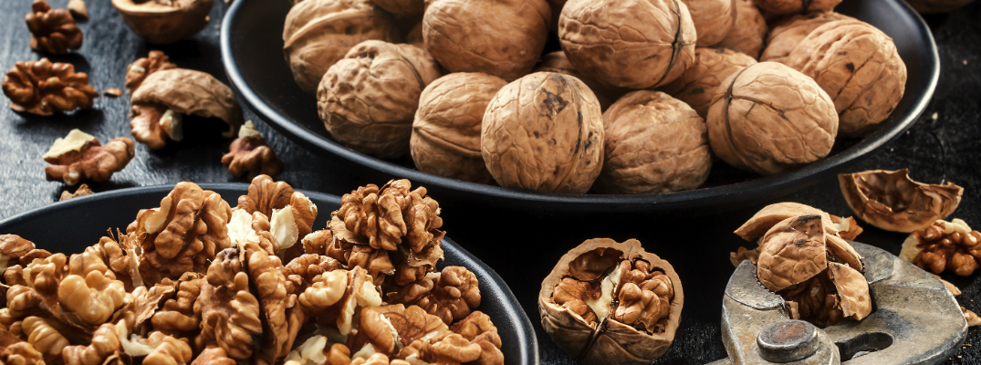 2017 Walnut Festival in Walnut Creek, CA Walnuts