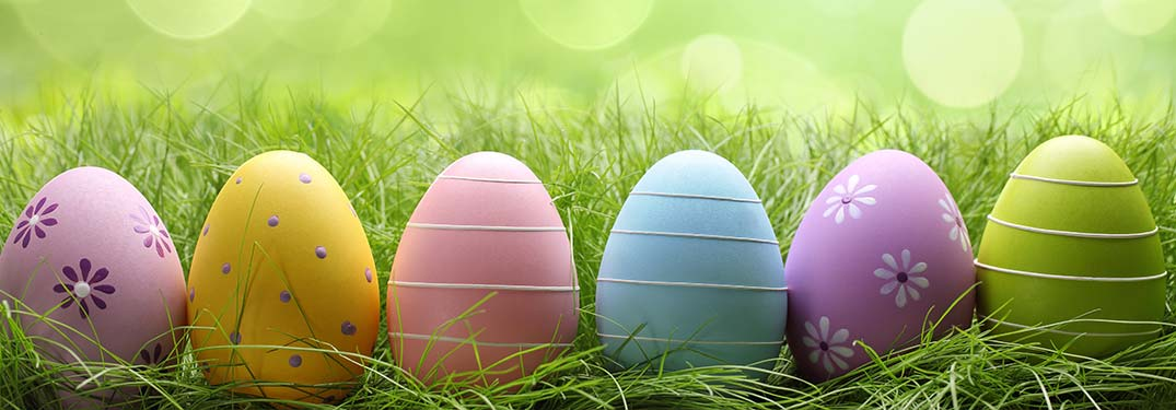 Image of a row of different colored Easter Eggs in a grassy field