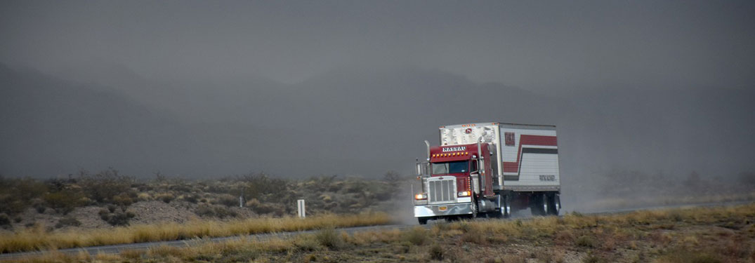 The Importance of Truck Drivers in Times of Crisis