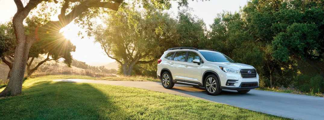 2019 Subaru Ascent on a sunny day in the woods
