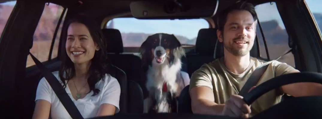 A man and a woman with a dog in the 2019 Honda Passport