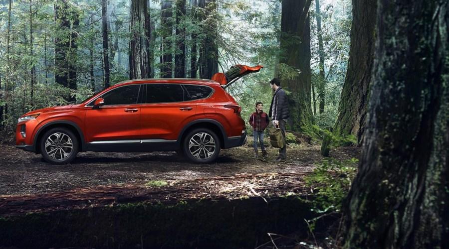 Red 2019 Hyundai Santa Fe in the woods