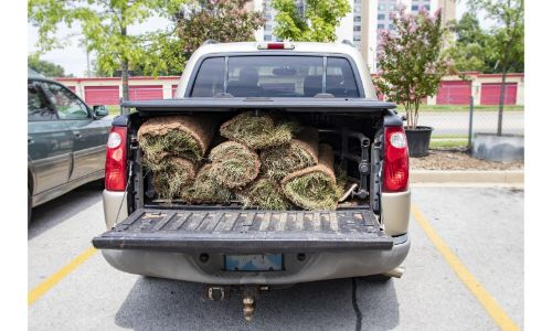 sod piled up in back of truck with bed liner