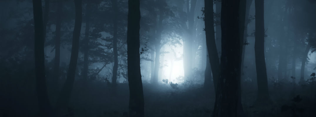 A photo illustration of a spooky scene set in the woods.