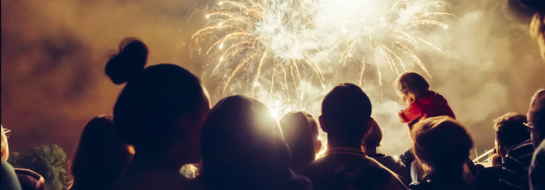 Back of people's heads with white firework lighting up the sky