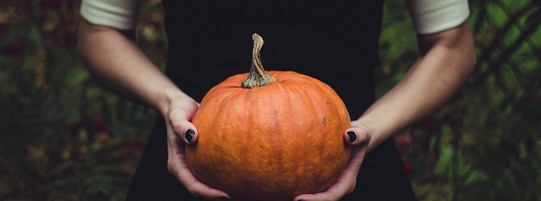 hands holding pumpkin