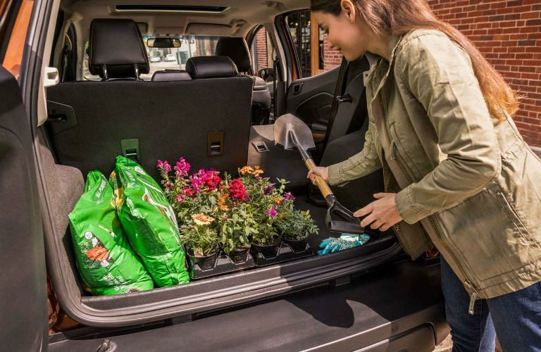 Woman loading cargo in rear area of 2019 Ford EcoSport