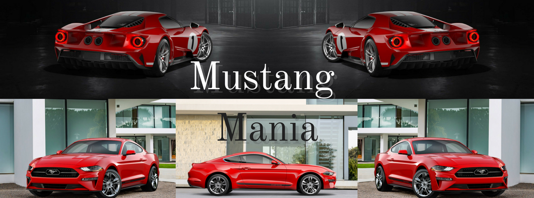 2018 Ford Mustang Collage