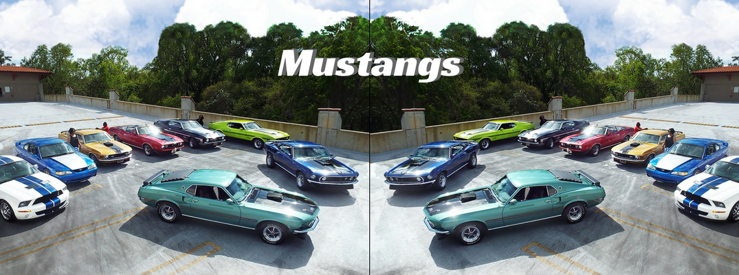 Mustangs all around