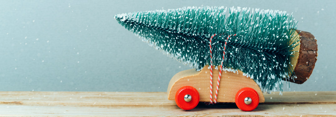 toy car with toy christmas tree strapped to its hood