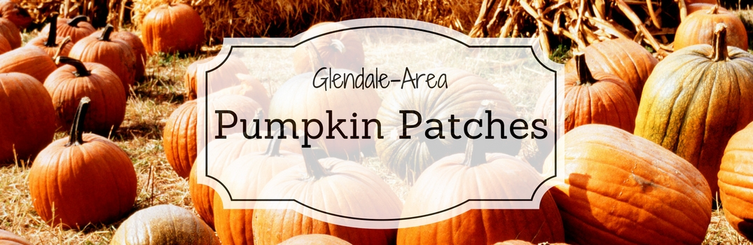 Best Pumpkin Patches near Glendale CA