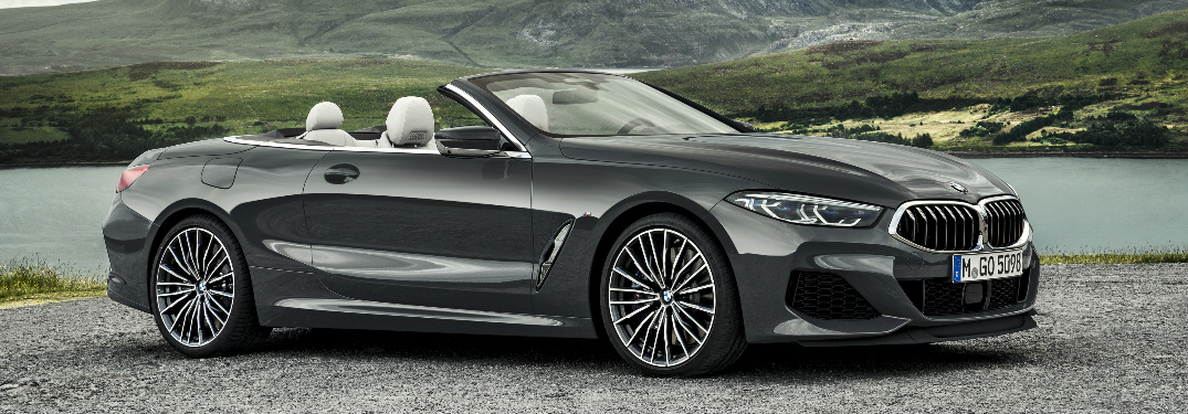 Grey 2019 BMW 8 Series Convertible Parked near a Lake