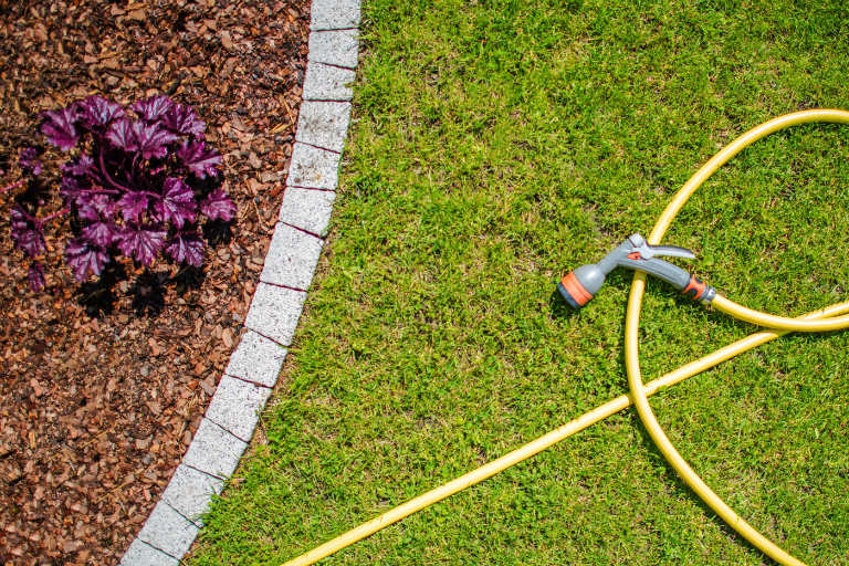 overhead view of a garden and a hose with a sprinkler head