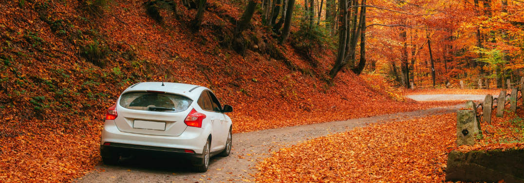 car driving in the fall