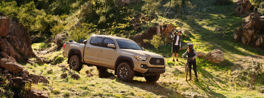 What colors does the 2019 Toyota Tacoma come in?