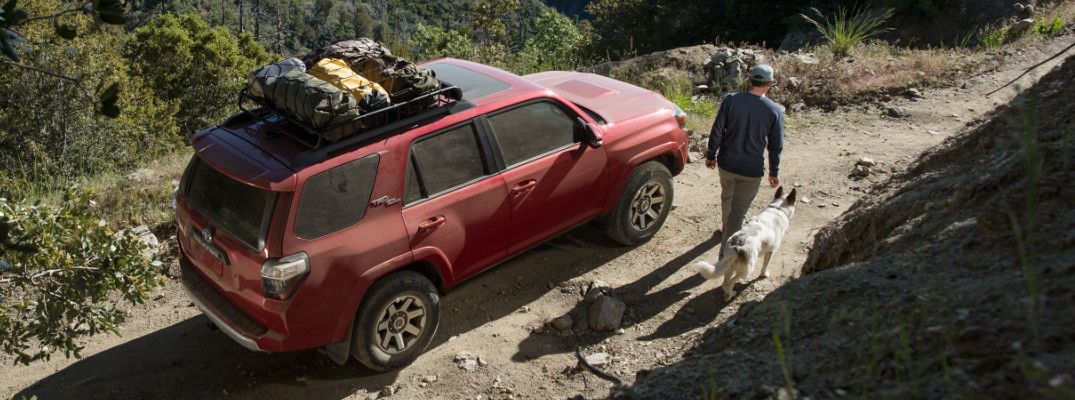 Here are all the paint colors available on the new 2019 Toyota 4Runner