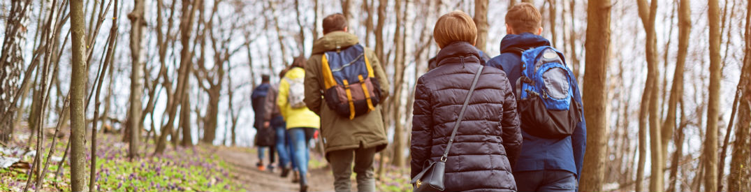 Group of people hiking in the woods
