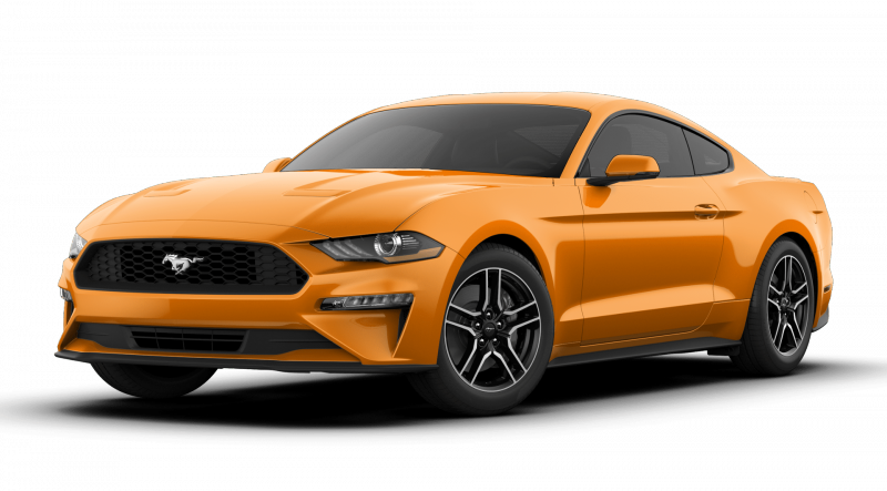 What colors does the 2019 Ford Mustang come in?