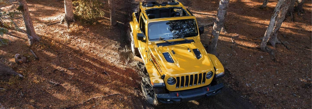 yellow 2019 jeep wrangler in forest