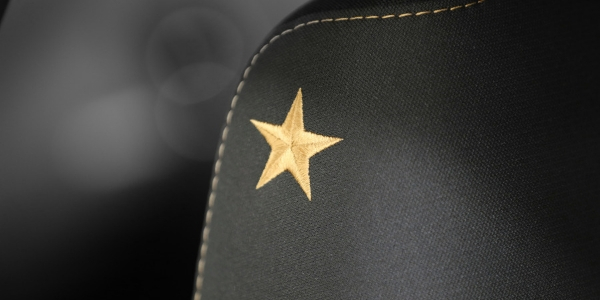 Closeup of star detailing in Dodge Charger Stars & Stripes Edition
