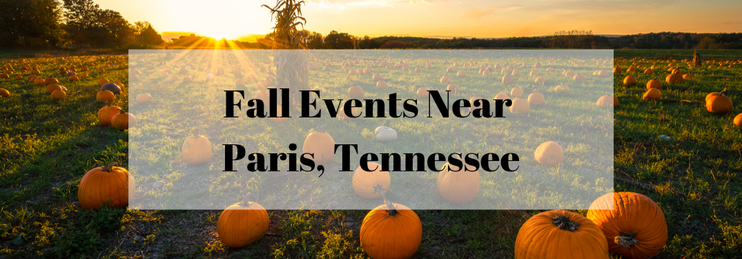 "Photo of pumpkin patch in the sunset with a transparent white box behind black text that says ""Fall Events Near Paris, Tennessee"""