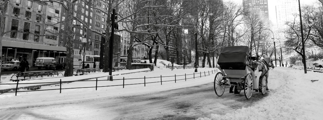 Black and white image of horse and carriage in NYC during the winter