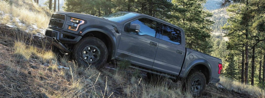 2018 Ford F-150 Raptor Driving Through Woods