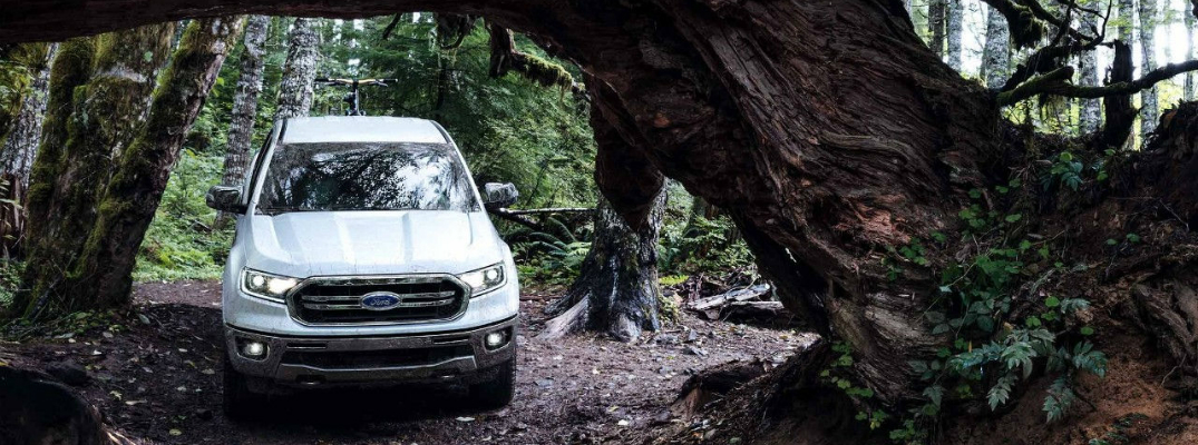 2019 Ford Ranger driving Underneath a Tree