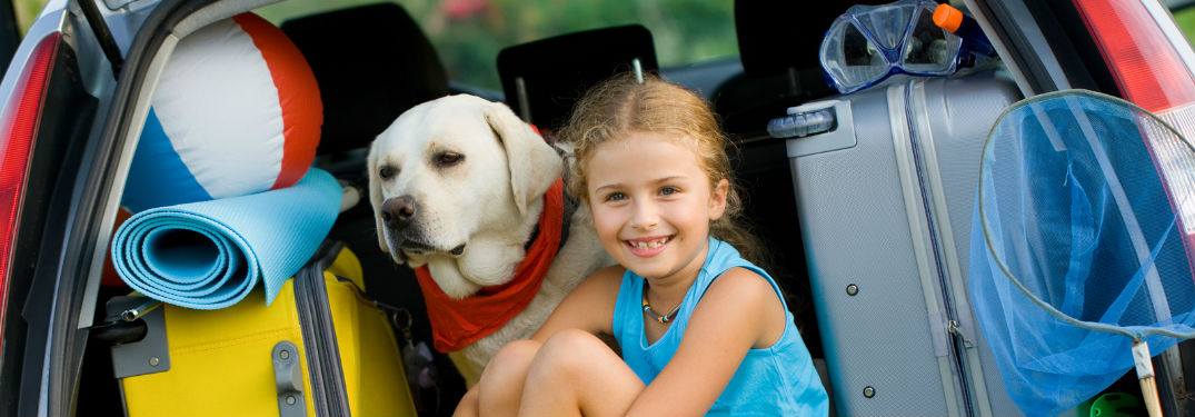 A girl and her dog in the back of an SUV