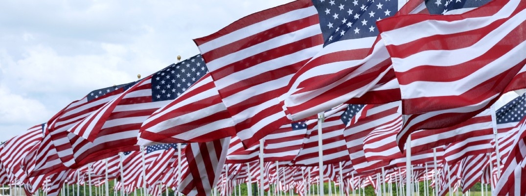A stock photo of American flags in the ground.