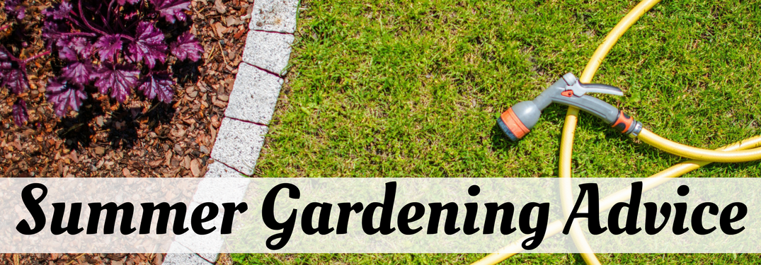 Summer Gardening Advice on a grassy background with garden hose