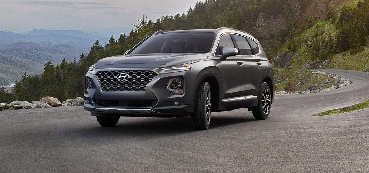 2019 Hyundai Santa Fe Rainforest side view