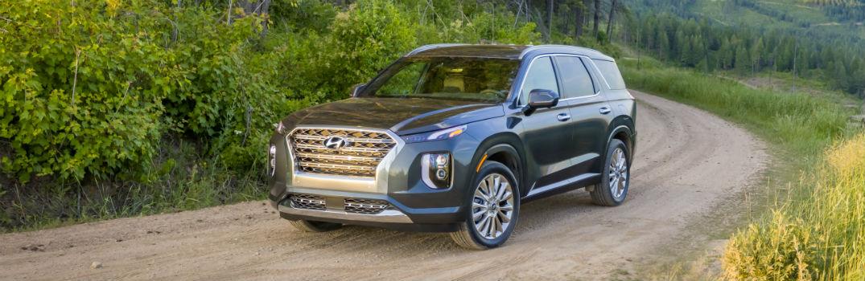 2020 Hyundai Palisade Exterior Driver Side Front