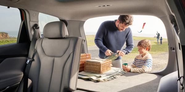 2020 Hyundai Santa Fe Interior Cabin Cargo Area Seats Folded Tailgate Open with Family