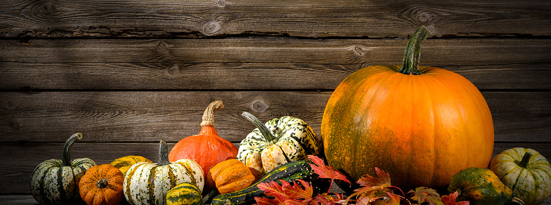 Pumpkins and other decorative fall produce