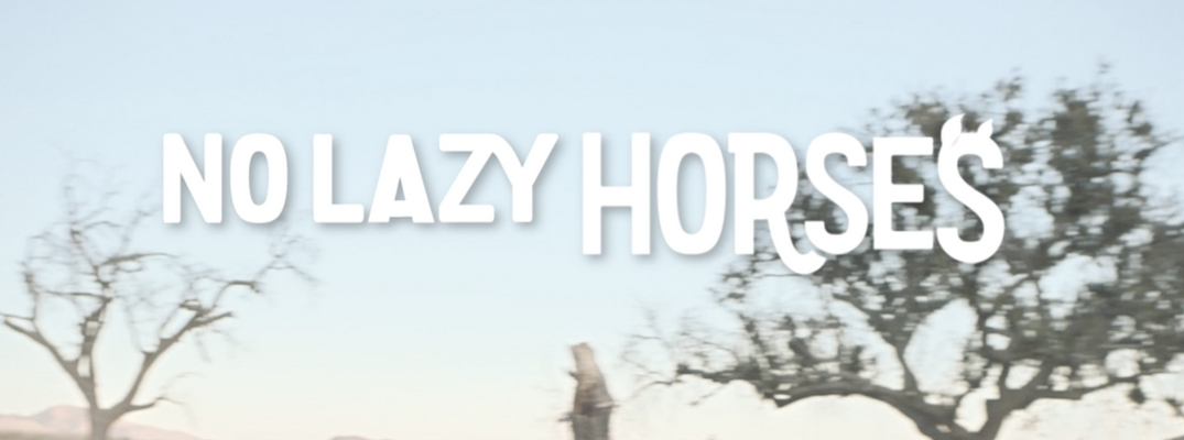 No Lazy Horses Commercial Banner