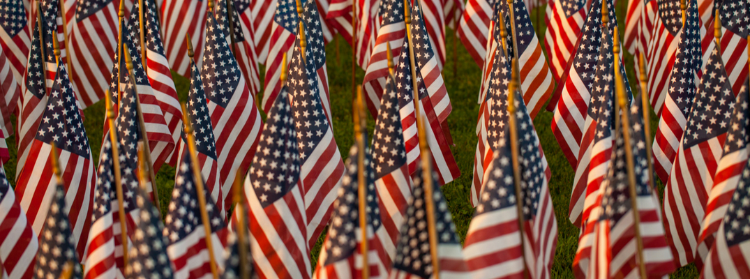 Rows of American Flags Covering a Graveyard