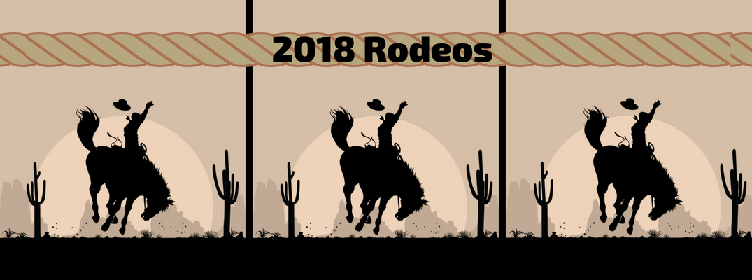 2018 Rodeos Banner with Rope and Silhouettes of Cowboys