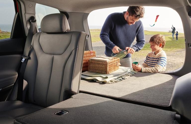2019 Hyundai Santa Fe Cargo Space and Family