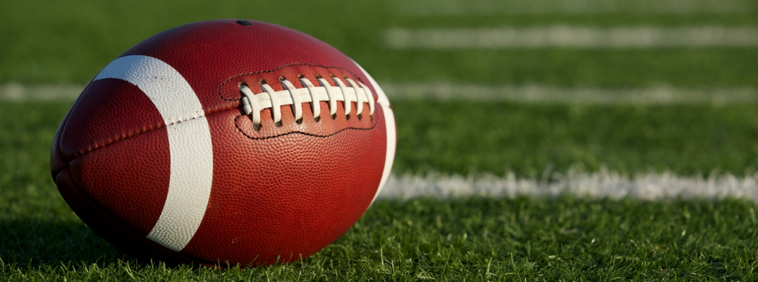 Leather football on green field