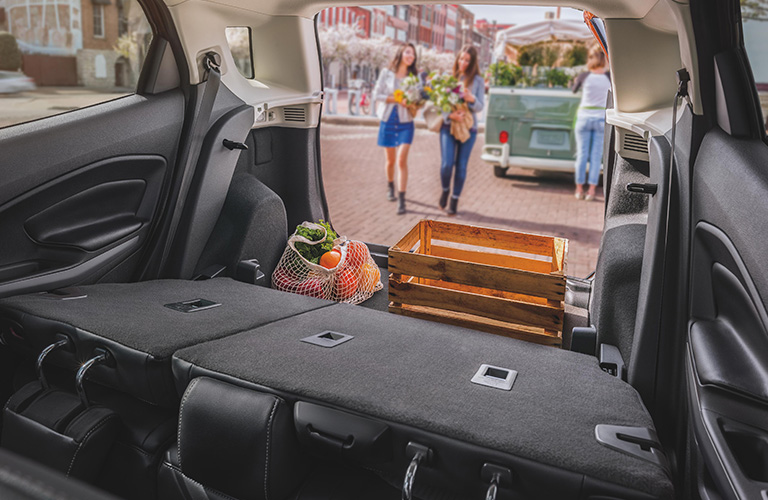 2020 Ford Ecosport Legroom And Cargo Space