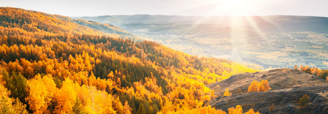 6 Great One-Tank Trips for Fall Colors