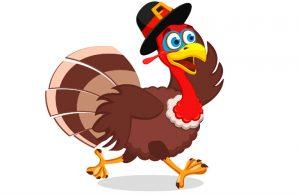 A Turkey running
