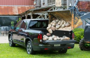 Honda Ridgeline truck bed being filled with rocks