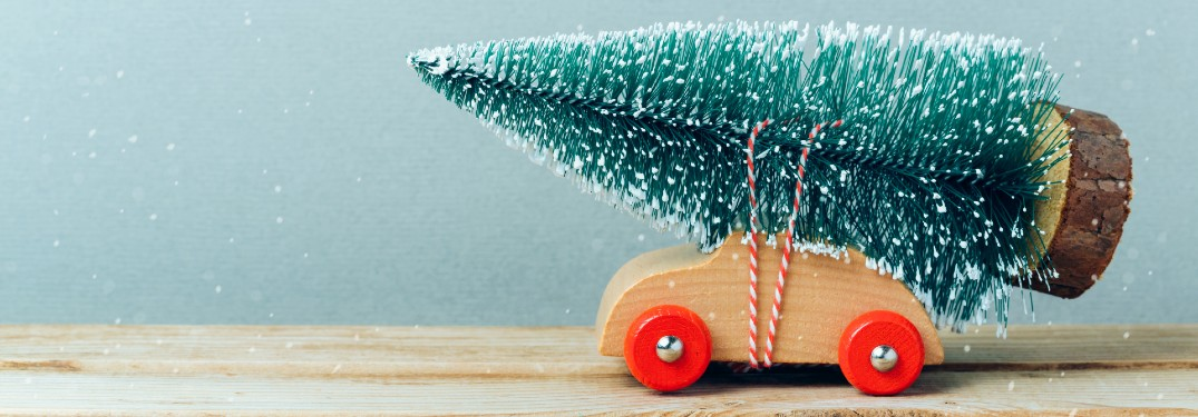 Graphic of a toy car with a tree tied to it