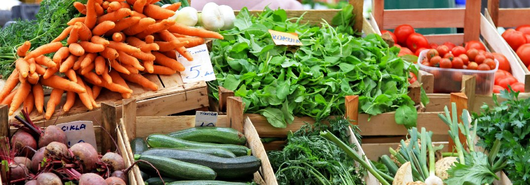 Farmers Markets in Lakeland, Orlando, and Tampa, FL