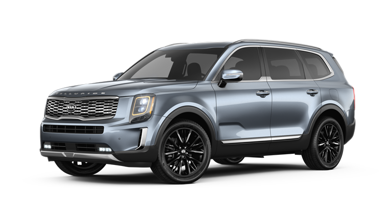 2020 Kia Telluride Everlasting Silver Exterior Color Option