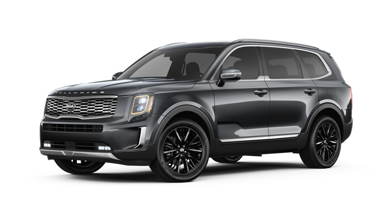 2020 Kia Telluride Gravity Gray Exterior Color Option