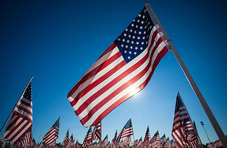 Image of a large American Flag and several small American Flags
