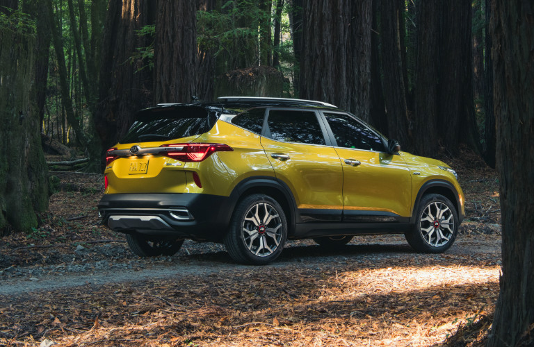 Yellow 2021 Kia Seltos parked in a forest